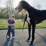 Смешные фото собак и детей 3
