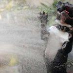 Смешные фото собак 2